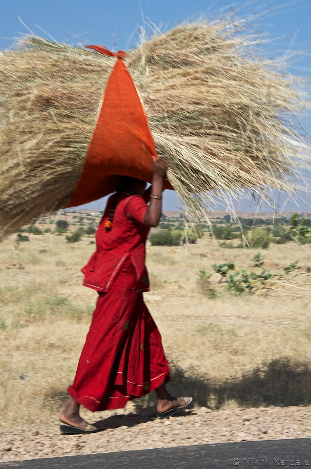 Carry hay till the Sun shines